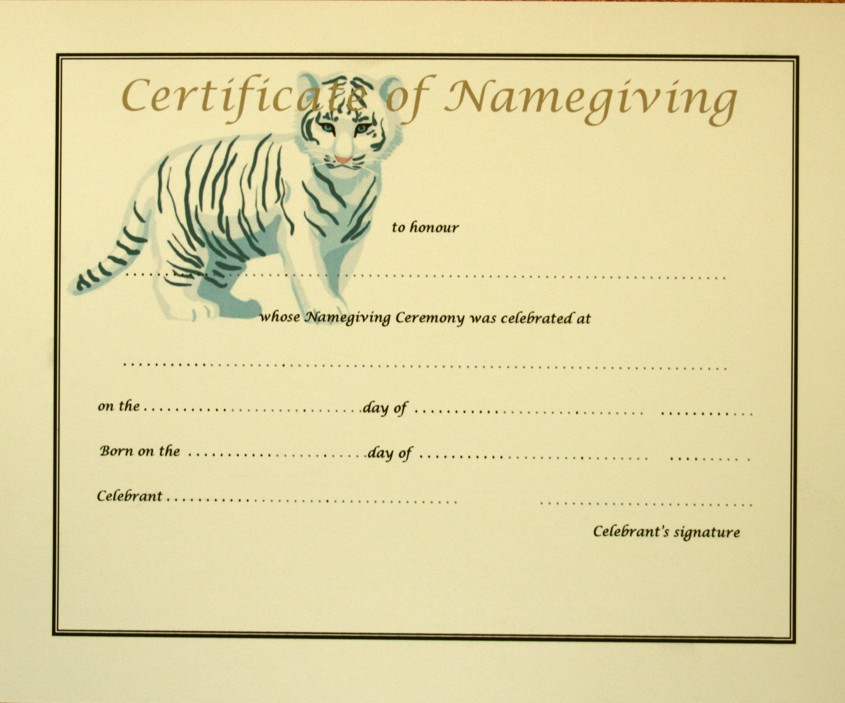 Final Cert Namegiving Tiger
